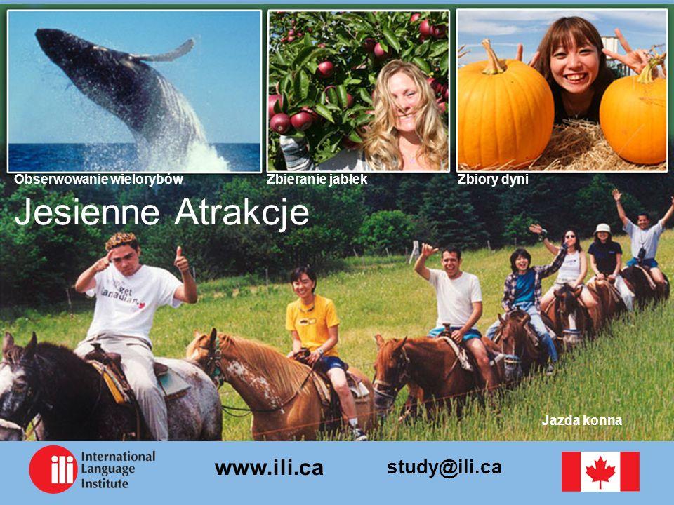 study@ili.ca www.ili.ca Jesienne Atrakcje Zbiory dyniZbieranie jabłekObserwowanie wielorybów Jazda konna