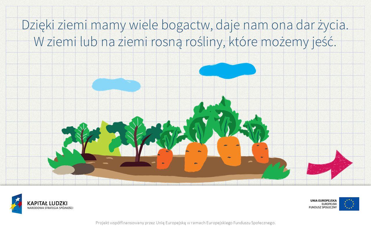 Dzięki ziemi mamy wiele bogactw, daje nam ona dar życia. W ziemi lub na ziemi rosną rośliny, które możemy jeść. Projekt współfinansowany przez Unię Eu