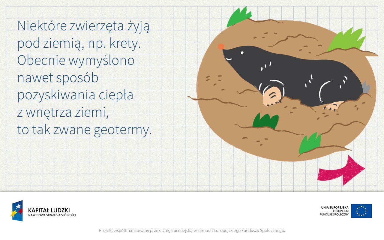 Niektóre zwierzęta żyją pod ziemią, np. krety. Obecnie wymyślono nawet sposób pozyskiwania ciepła z wnętrza ziemi, to tak zwane geotermy. Projekt wspó