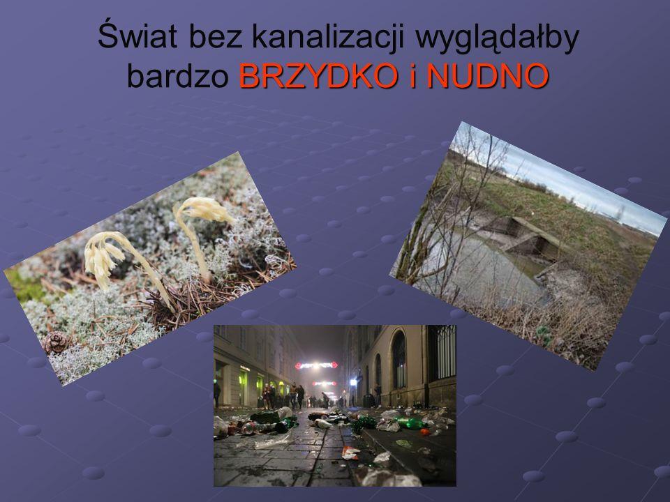 BRZYDKO i NUDNO Świat bez kanalizacji wyglądałby bardzo BRZYDKO i NUDNO