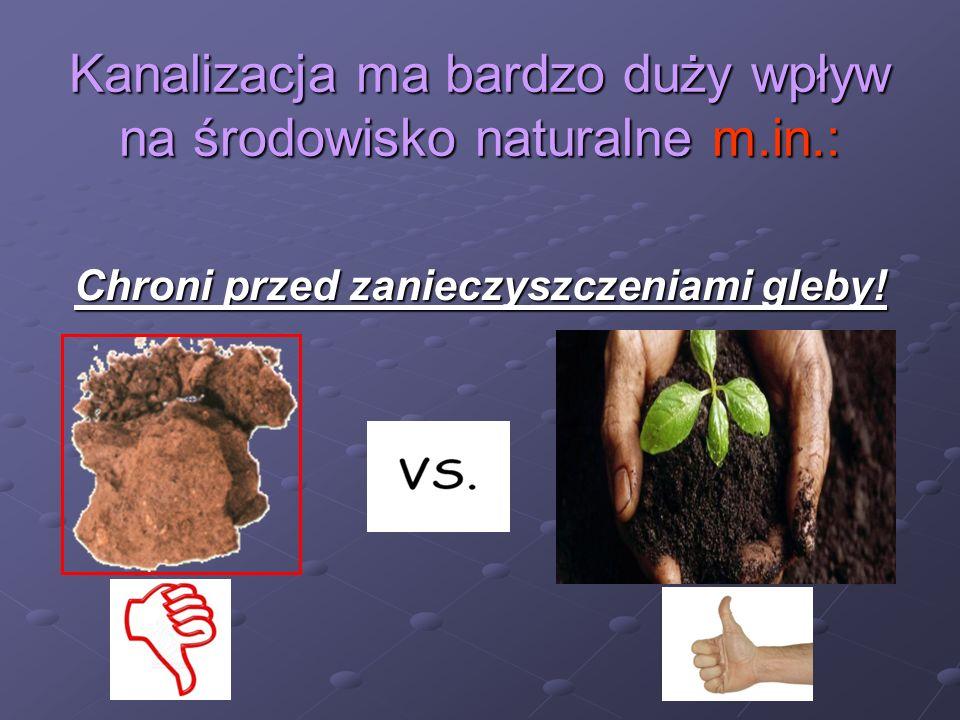 Kanalizacja ma bardzo duży wpływ na środowisko naturalne m.in.: Chroni przed zanieczyszczeniami gleby!