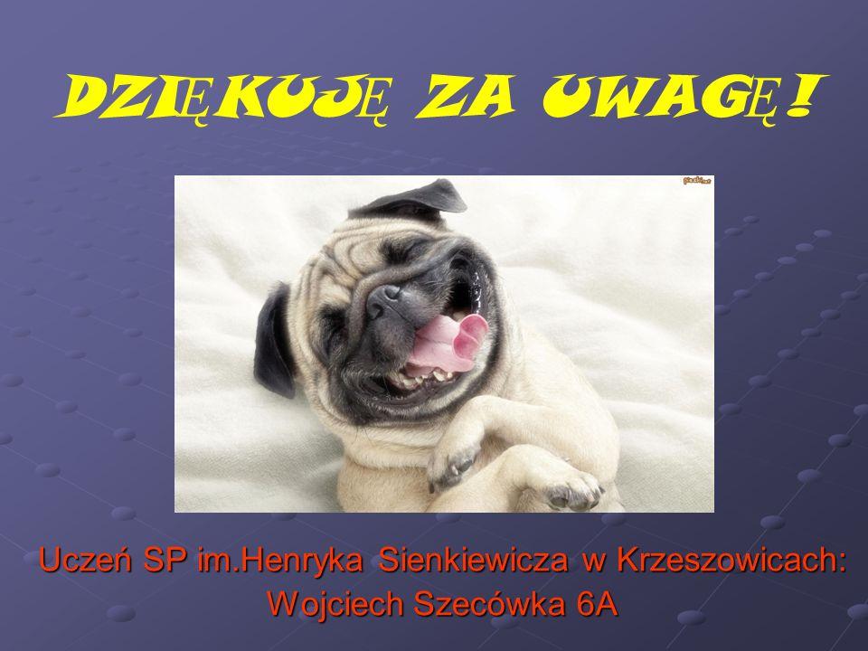 DZI Ę KUJ Ę ZA UWAG Ę ! Uczeń SP im.Henryka Sienkiewicza w Krzeszowicach: Wojciech Szecówka 6A