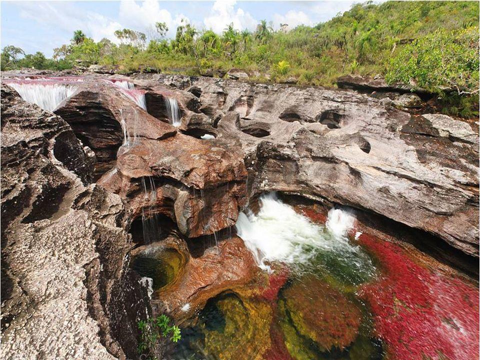 W skałach na dnie rzeki znajduje się wiele drobnych otworów, zwanych gniazdami piskląt; prawdopodobnie powstały one przez uderzenia bardzo twardych ma