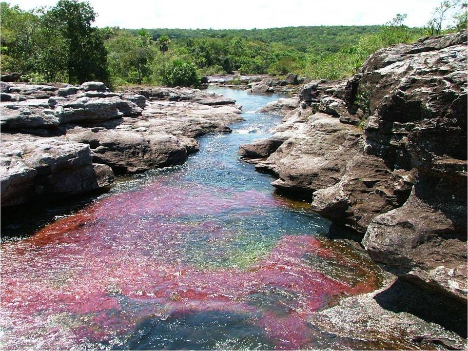 Rzeka zaliczana jest do dziedzictwa biologicznego ludzkości. Najlepszy okres do zwiedzania – od czerwca do listopada (pora deszczowa, wysoki poziom wo