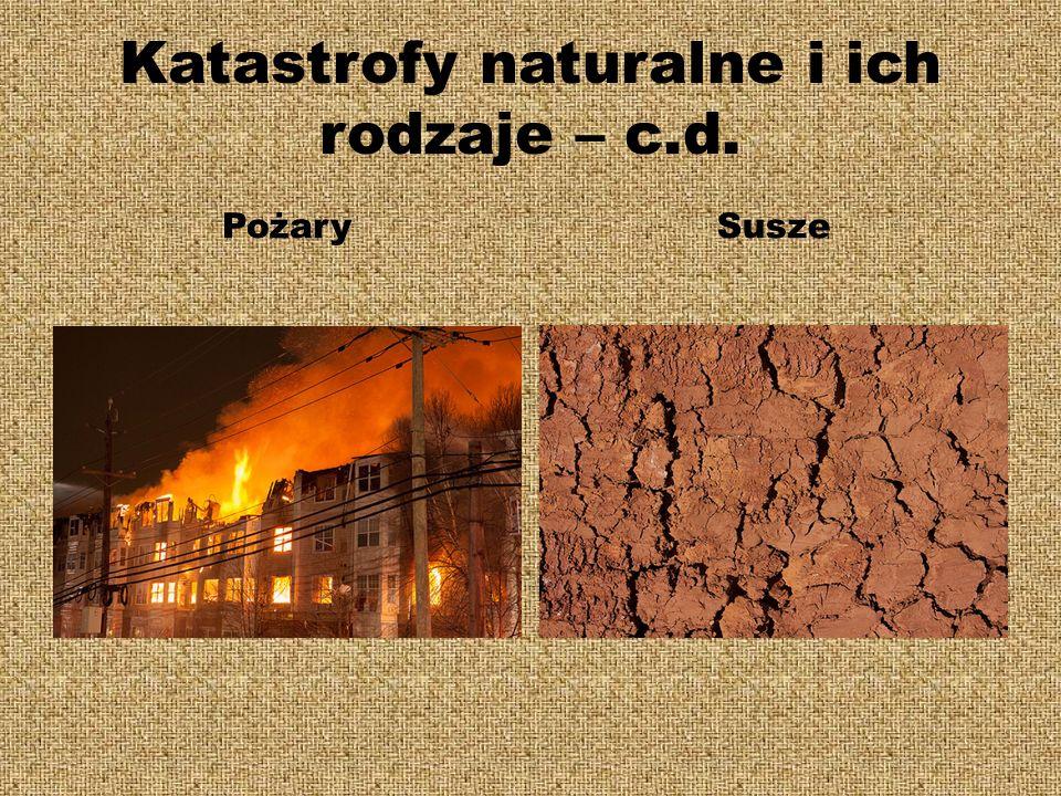 Katastrofy naturalne i ich rodzaje – c.d. PożarySusze