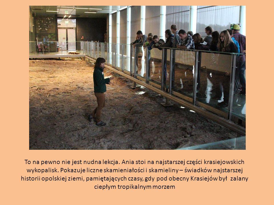 To na pewno nie jest nudna lekcja. Ania stoi na najstarszej części krasiejowskich wykopalisk. Pokazuje liczne skamieniałości i skamieliny – świadków n