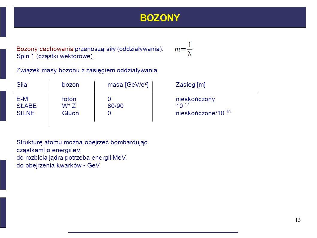 13 BOZONY Bozony cechowania przenoszą siły (oddziaływania): Spin 1 (cząstki wektorowe). Związek masy bozonu z zasięgiem oddziaływania Siłabozonmasa [G