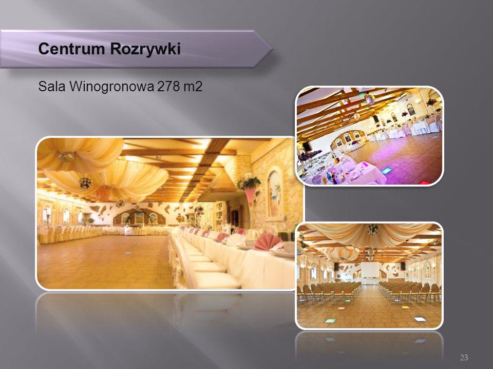 Centrum Rozrywki Sala Winogronowa 278 m2 23