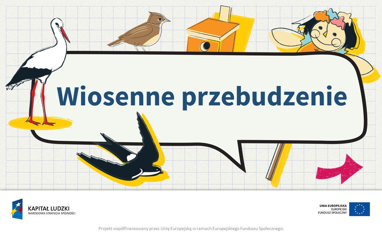 Wiosenne przebudzenie Projekt współfinansowany przez Unię Europejską w ramach Europejskiego Funduszu Społecznego.