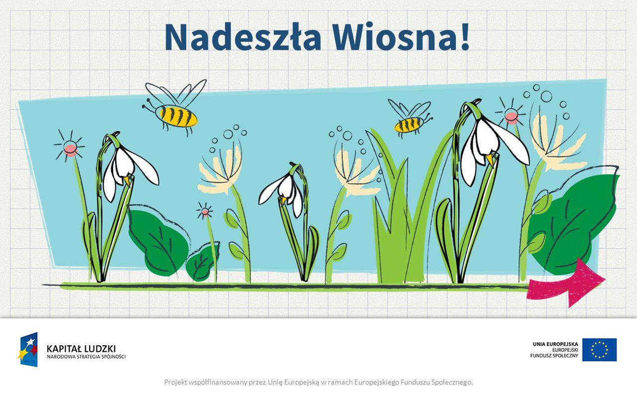 Nadeszła Wiosna! Projekt współfinansowany przez Unię Europejską w ramach Europejskiego Funduszu Społecznego.