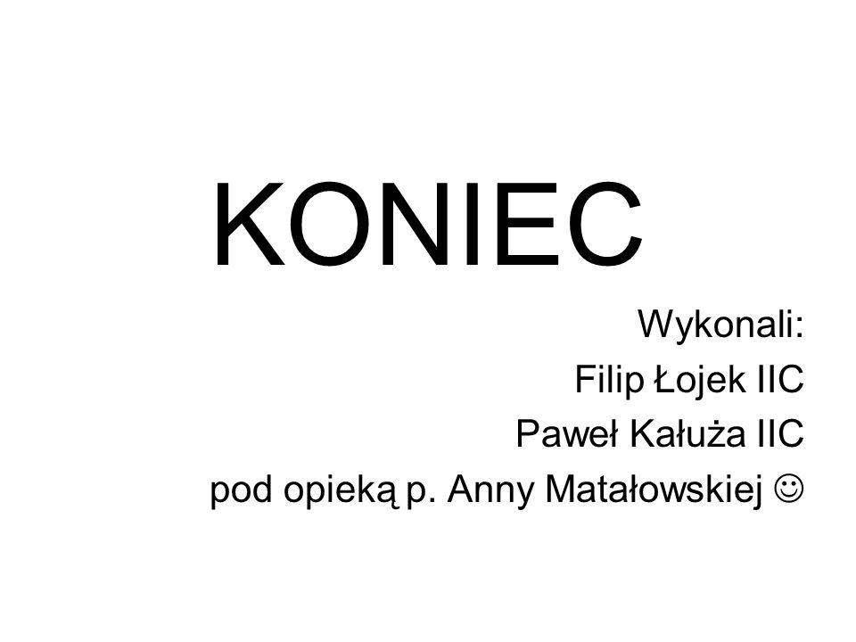 KONIEC Wykonali: Filip Łojek IIC Paweł Kałuża IIC pod opieką p. Anny Matałowskiej