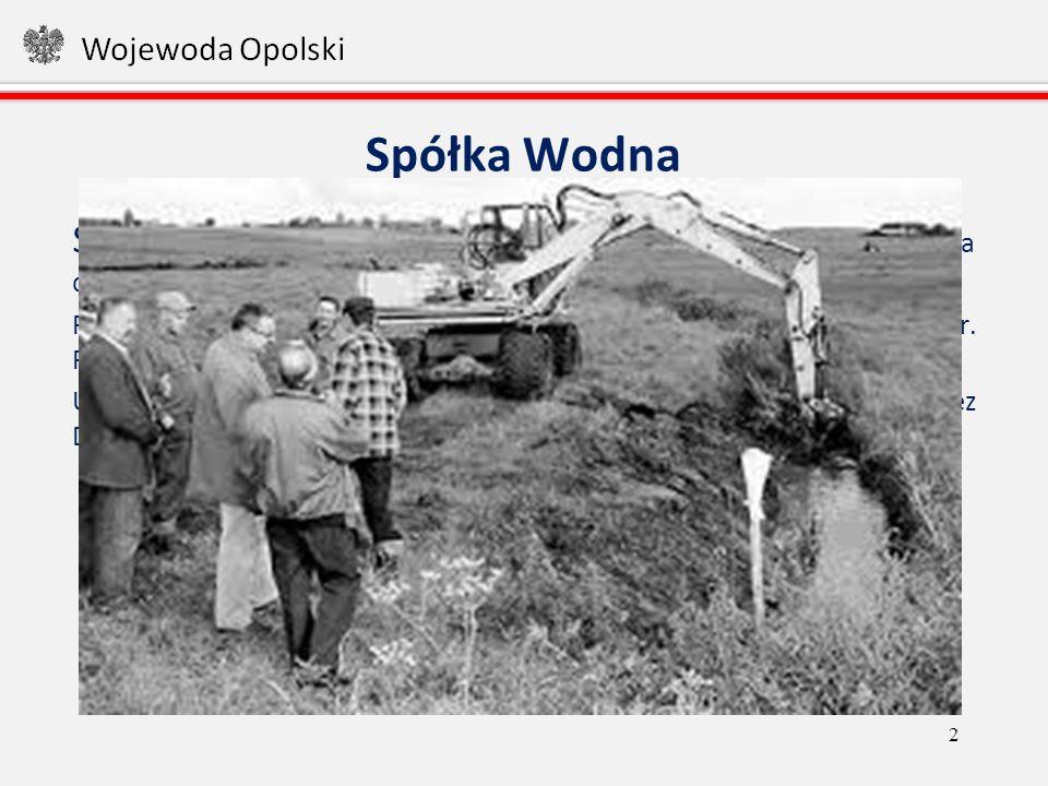 Powierzchnia gruntów zmeliorowanych na terenie 26 aktywnych spółek wodnych (75 100 ha) 13