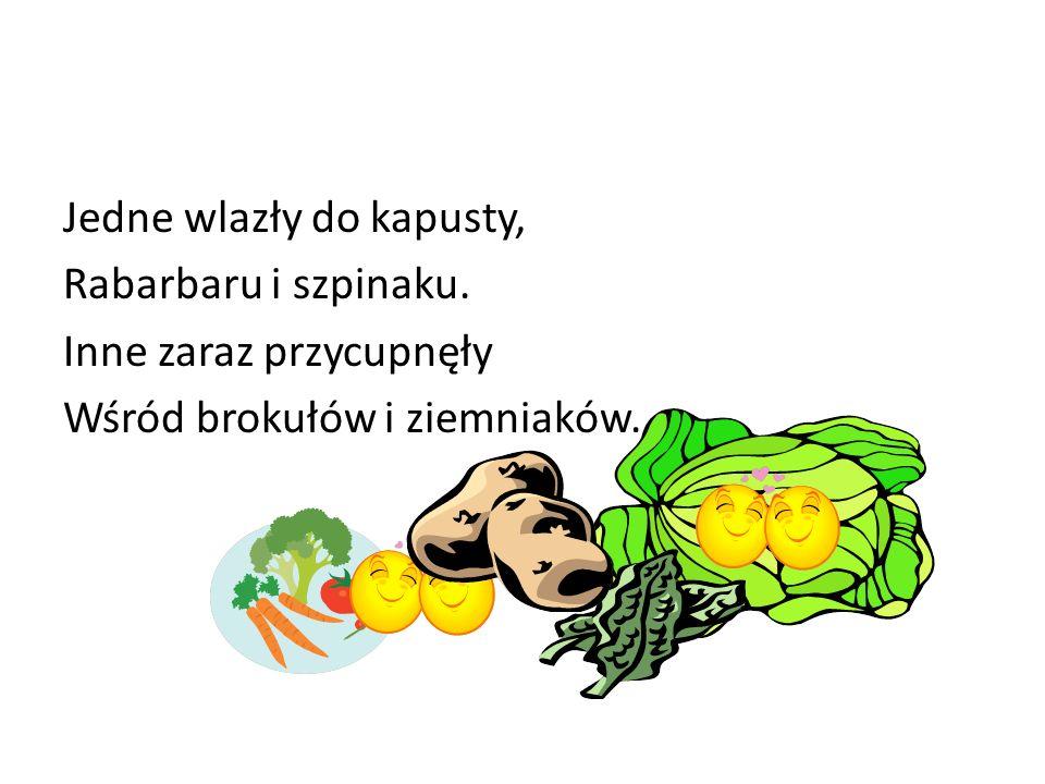 Jedne wlazły do kapusty, Rabarbaru i szpinaku. Inne zaraz przycupnęły Wśród brokułów i ziemniaków.