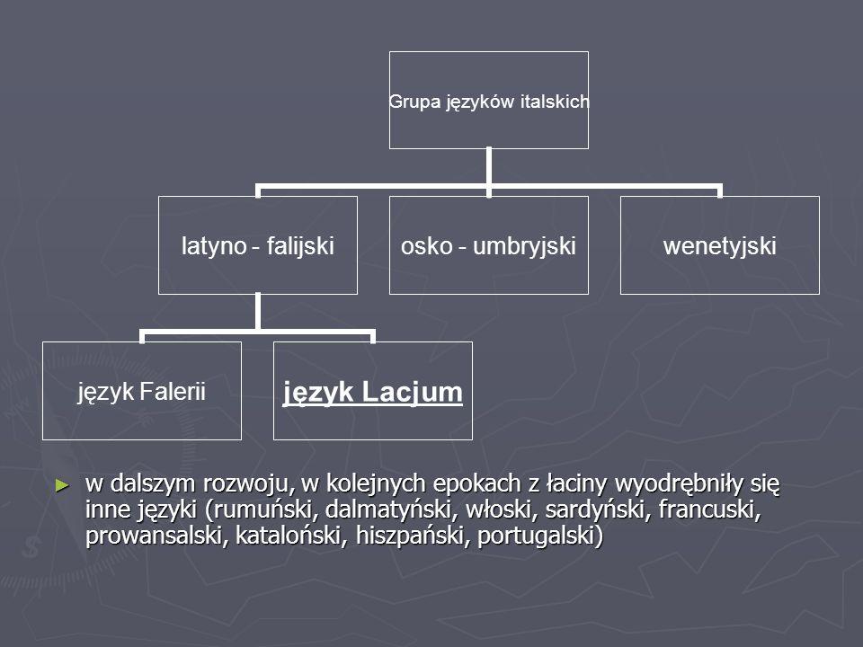Grupa języków italskich latyno - falijski język Faleriijęzyk Lacjum osko - umbryjski wenetyjski ► w dalszym rozwoju, w kolejnych epokach z łaciny wyod