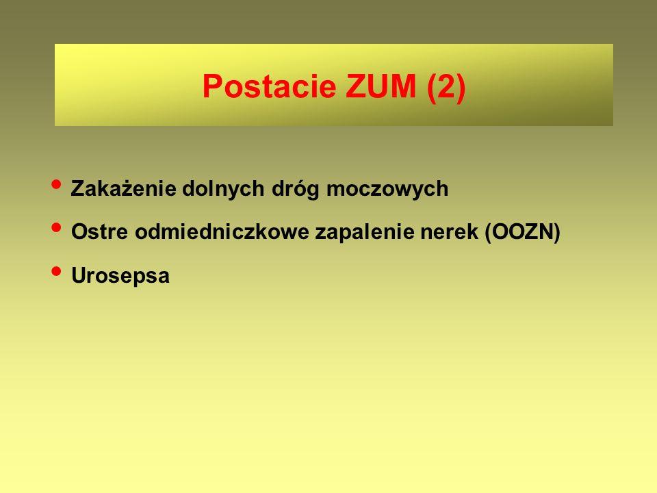 Zakażenie dolnych dróg moczowych Ostre odmiedniczkowe zapalenie nerek (OOZN) Urosepsa Postacie ZUM (2)