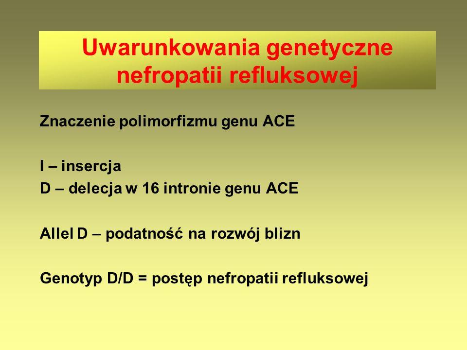 Uwarunkowania genetyczne nefropatii refluksowej Znaczenie polimorfizmu genu ACE I – insercja D – delecja w 16 intronie genu ACE Allel D – podatność na