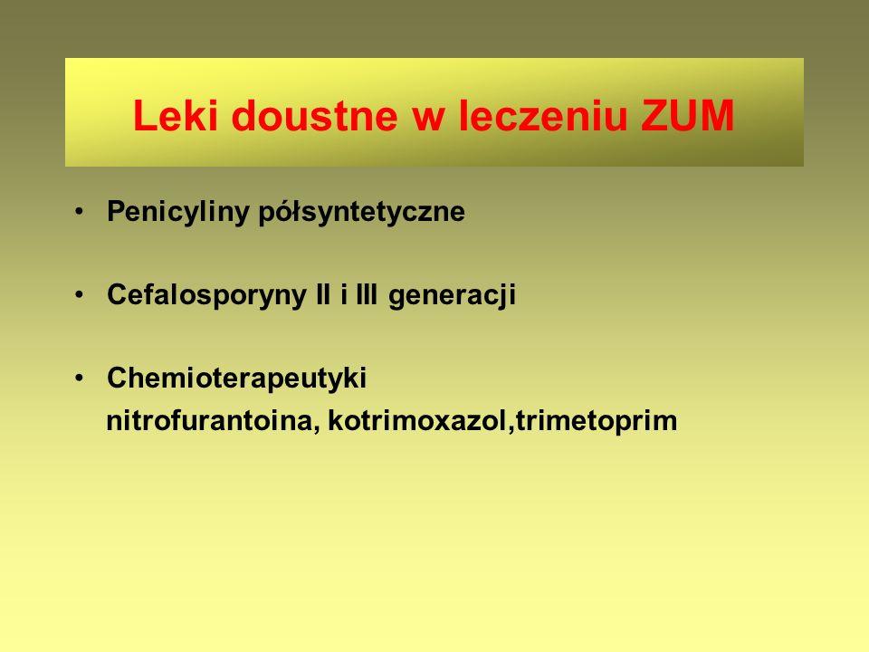 Penicyliny półsyntetyczne Cefalosporyny II i III generacji Chemioterapeutyki nitrofurantoina, kotrimoxazol,trimetoprim Leki doustne w leczeniu ZUM