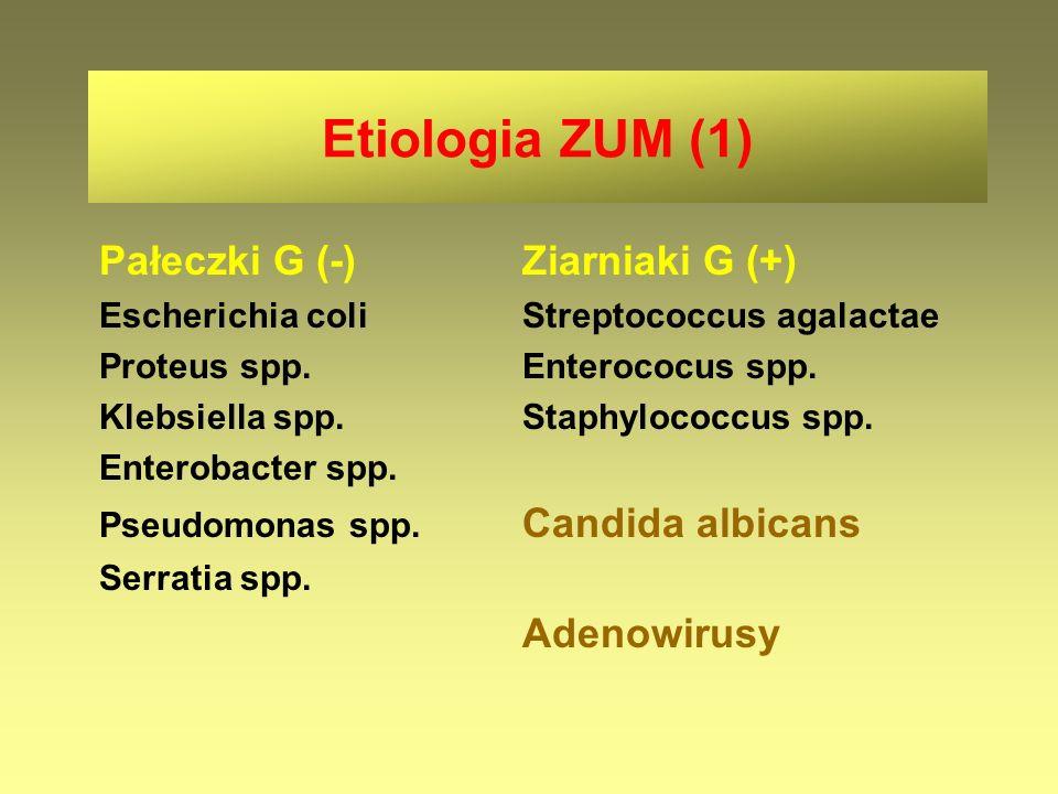 Etiologia ZUM (1) Pałeczki G (-)Ziarniaki G (+) Escherichia coliStreptococcus agalactae Proteus spp.Enterococus spp. Klebsiella spp.Staphylococcus spp