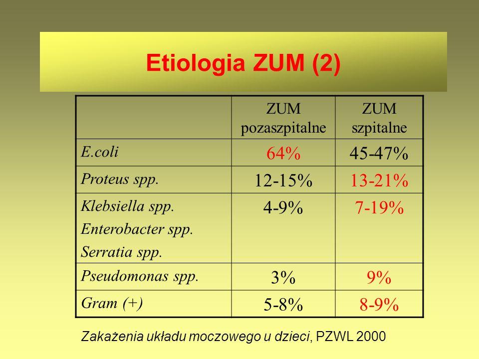 Etiologia ZUM (2) ZUM pozaszpitalne ZUM szpitalne E.coli 64%45-47% Proteus spp. 12-15%13-21% Klebsiella spp. Enterobacter spp. Serratia spp. 4-9%7-19%