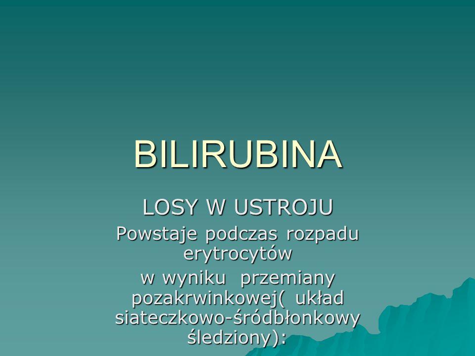BILIRUBINA LOSY W USTROJU Powstaje podczas rozpadu erytrocytów w wyniku przemiany pozakrwinkowej( układ siateczkowo-śródbłonkowy śledziony):