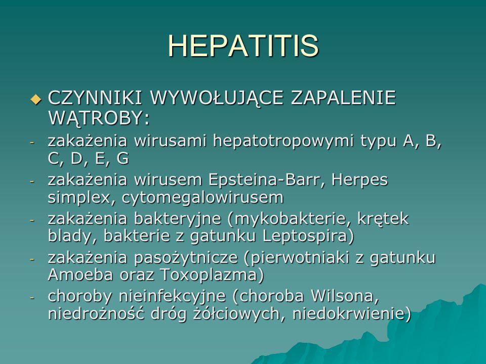 HEPATITIS  CZYNNIKI WYWOŁUJĄCE ZAPALENIE WĄTROBY: - zakażenia wirusami hepatotropowymi typu A, B, C, D, E, G - zakażenia wirusem Epsteina-Barr, Herpe