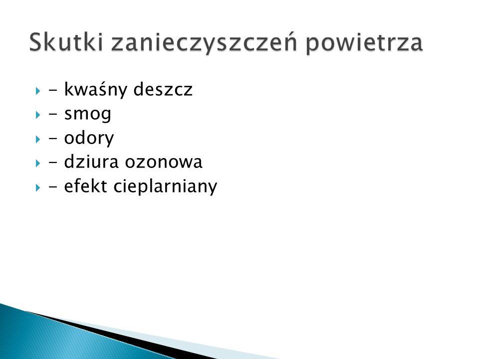  - kwaśny deszcz  - smog  - odory  - dziura ozonowa  - efekt cieplarniany