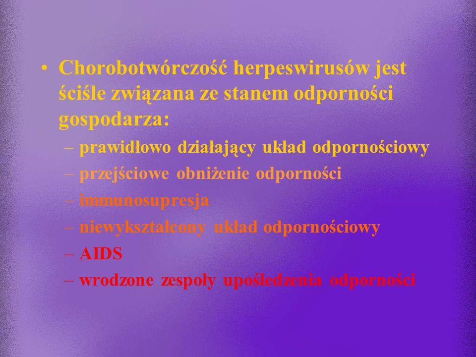 Droga przenoszenia a rozpowszechnienie w populacji Wirus% wyst. p-ciał Główna droga w populacjiprzenoszenia HHV-150%kontakt bezpośredni HHV-22 - 6%kon