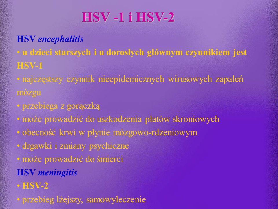 Opryszczka narządów płciowych HSV-2 (około 10% przypadków - HSV-1) zakażenie pierwotne najczęściej bezobjawowe, w przypadku zakażenia objawowego – róż