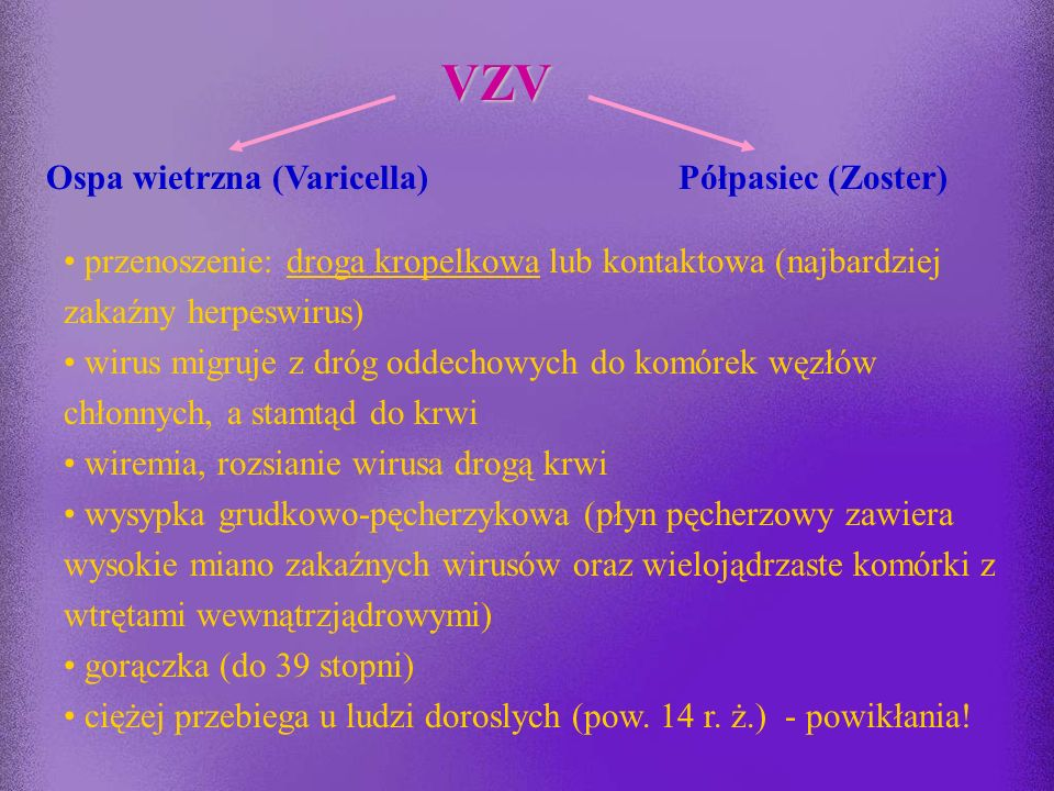 VARICELLA-ZOSTER VIRUS -VZV (Herpes Zoster Virus, Human Herpes Virus-3)