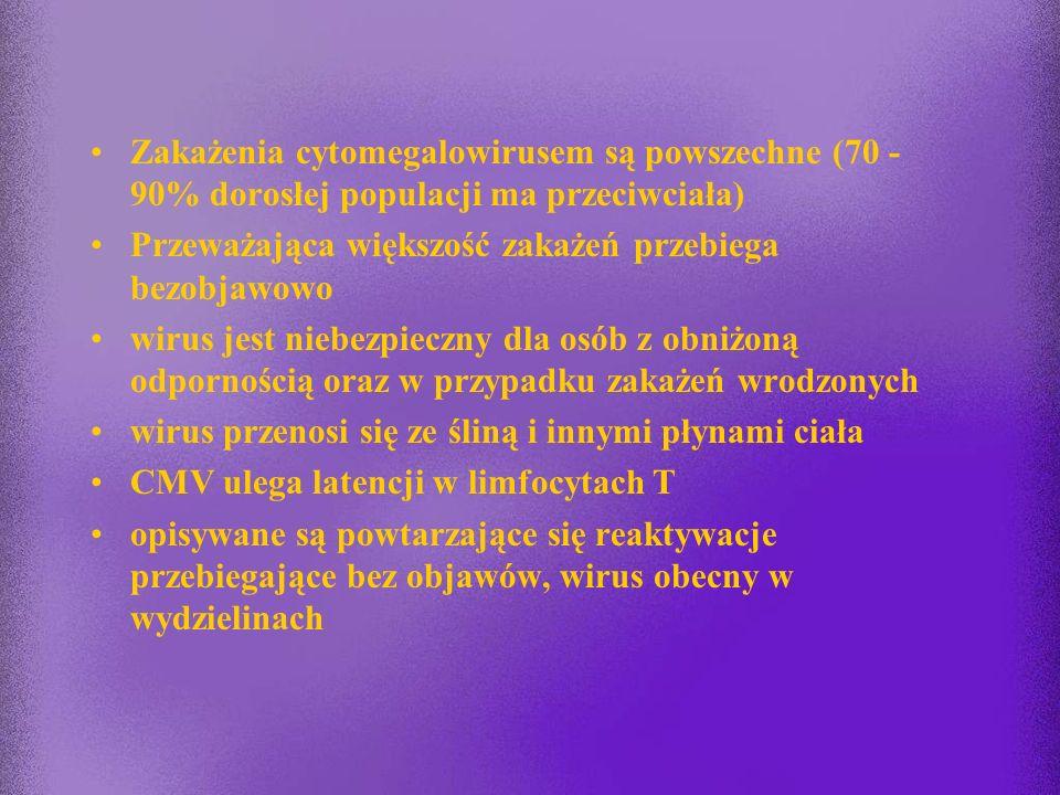 Cytomegalowirus Używane nazwy: - Human Herpesvirus type 5 (HHV 5) - wirus cytomegalii (CMV)