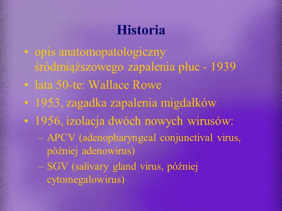 -spośród 51 serotypów tylko 1/3 izolowana jest zazwyczaj z materiałów klinicznych pobranych od człowieka -kilka serotypów jest najczęściej związanych