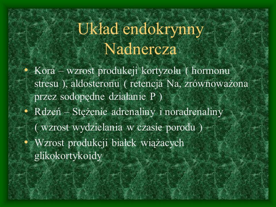 Układ endokrynny Nadnercza Kora – wzrost produkcji kortyzolu ( hormonu stresu ), aldosteronu ( retencja Na, zrównoważona przez sodopędne działanie P ) Rdzeń – Stężenie adrenaliny i noradrenaliny ( wzrost wydzielania w czasie porodu ) Wzrost produkcji białek wiążacych glikokortykoidy