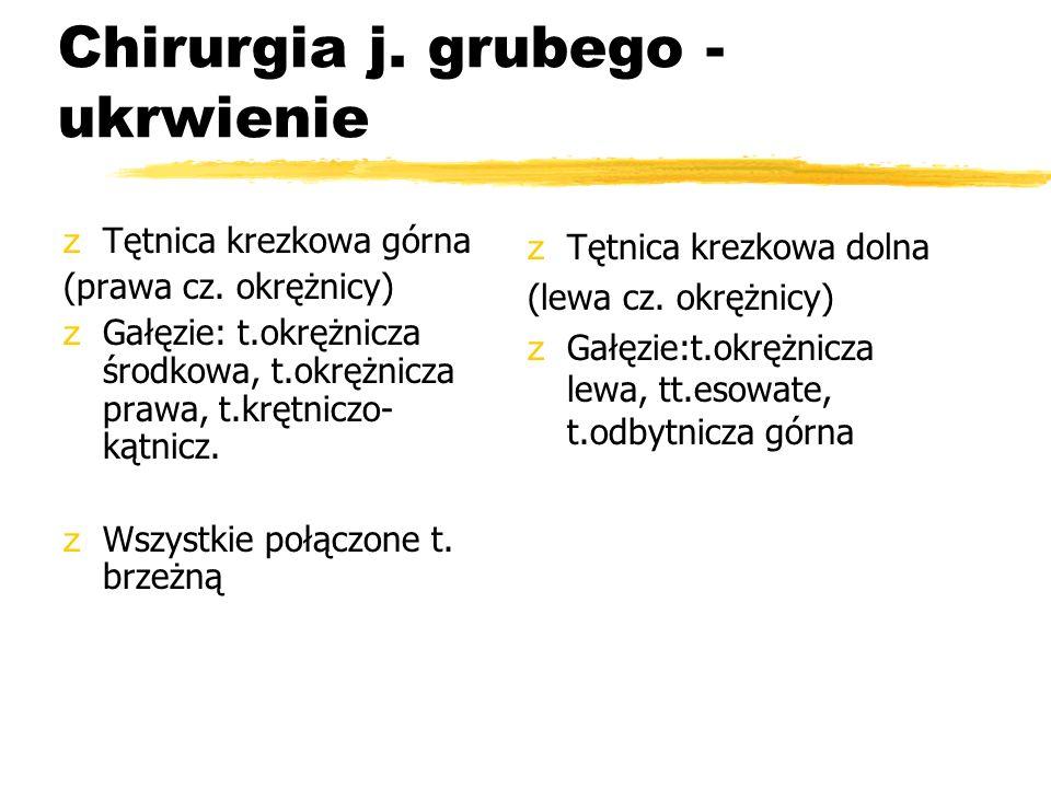 Chirurgia j. grubego - ukrwienie zTętnica krezkowa górna (prawa cz. okrężnicy) zGałęzie: t.okrężnicza środkowa, t.okrężnicza prawa, t.krętniczo- kątni
