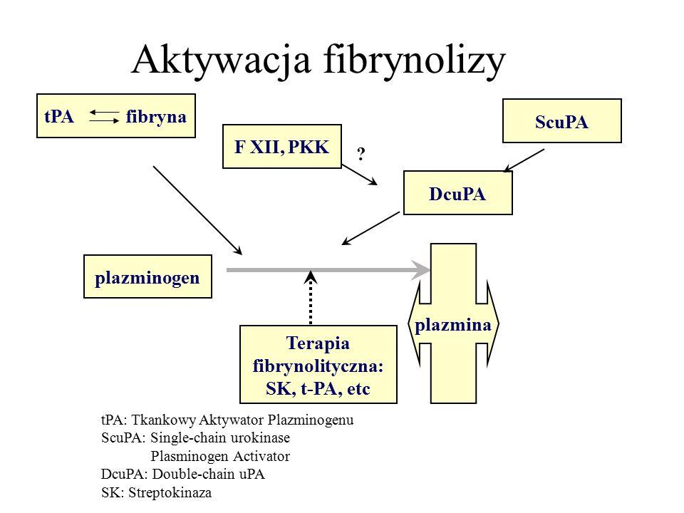 tPA fibryna F XII, PKK ScuPA DcuPA plazminogen Aktywacja fibrynolizy .