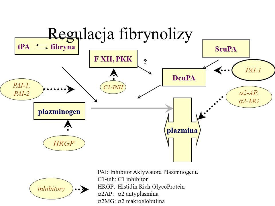 tPA fibryna F XII, PKK ScuPA DcuPA plazminogen  2-AP,  2-MG PAI-1, PAI-2 C1-INH Regulacja fibrynolizy .