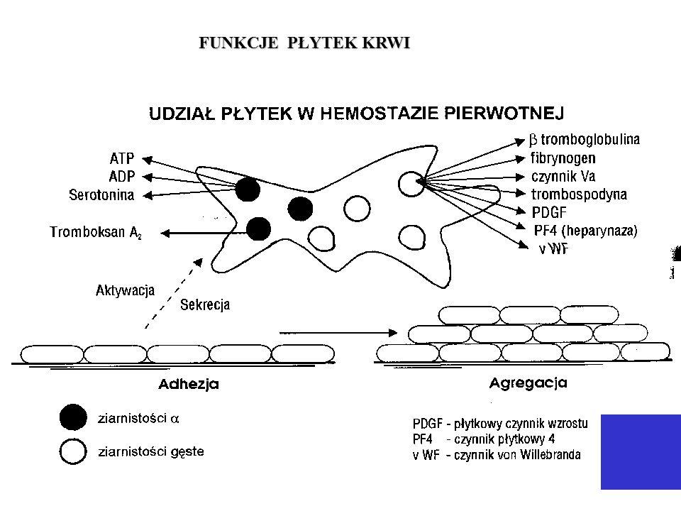 czas lizy euglobulin III trymestr ciąży okres pooperacyjny - choroby zatorowo-zakrzepowe - zawał serca i miażdżyca - cukrzyca - nadciśnienie czas lizy euglobulin skazy krwotoczne przebiegające z hiperfibrynolizą - zaawansowana choroba nowotworowa - marskość wątroby - ostre stany septyczne - po przetoczeniu krwi obcej grupowo przy znacznym skróceniu czasu lizy euglobulin przed operacją podaje się leki hamujące aktywność t-PA