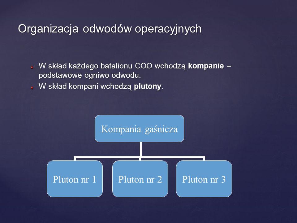 Organizacja odwodów operacyjnych W skład każdego batalionu COO wchodzą kompanie – podstawowe ogniwo odwodu. W skład kompani wchodzą plutony. Kompania