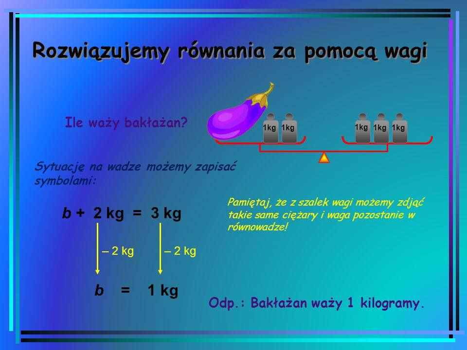 Zajęcia unijne 05.06.2014 TEMAT: Ile waży, czyli jak rozwiązywać równania?