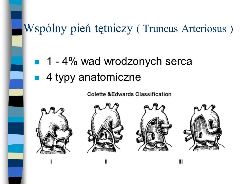 Wspólny pień tętniczy ( Truncus Arteriosus ) n 1 - 4% wad wrodzonych serca n 4 typy anatomiczne