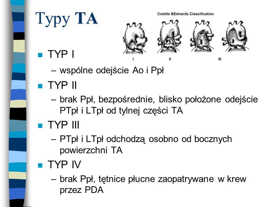TA Typy TA n TYP I –wspólne odejście Ao i Ppł n TYP II –brak Ppł, bezpośrednie, blisko położone odejście PTpł i LTpł od tylnej części TA n TYP III –PT