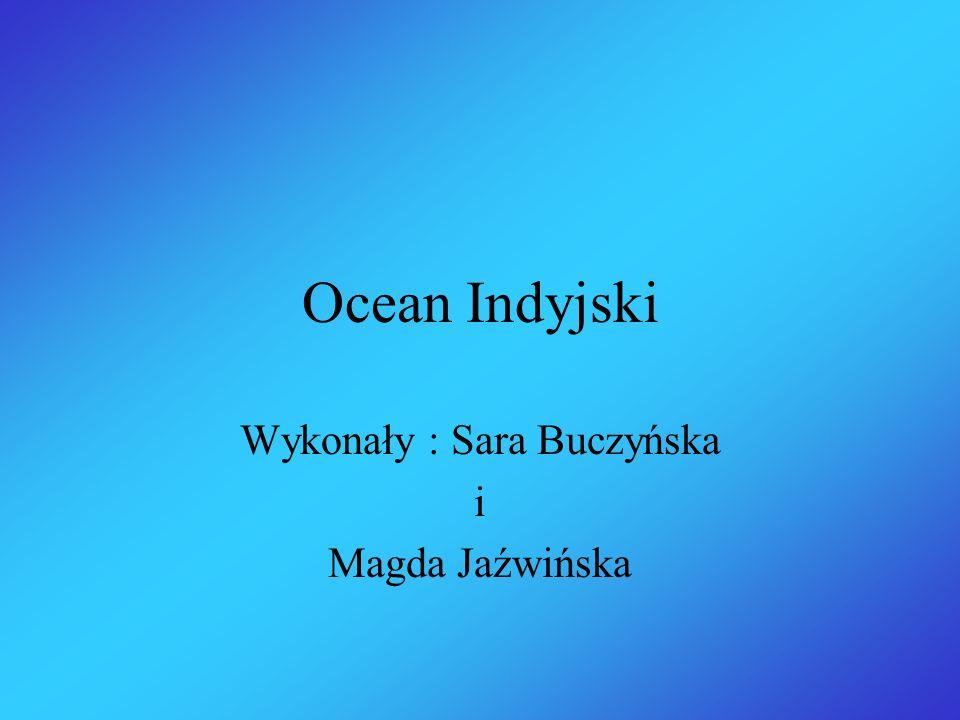 Ocean Indyjski Wykonały : Sara Buczyńska i Magda Jaźwińska