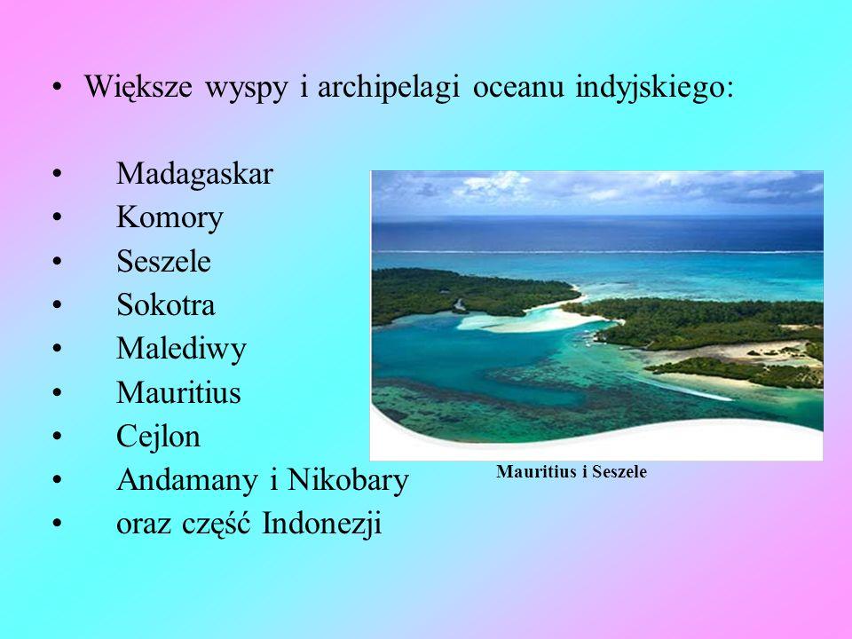 Większe wyspy i archipelagi oceanu indyjskiego: Madagaskar Komory Seszele Sokotra Malediwy Mauritius Cejlon Andamany i Nikobary oraz część Indonezji M