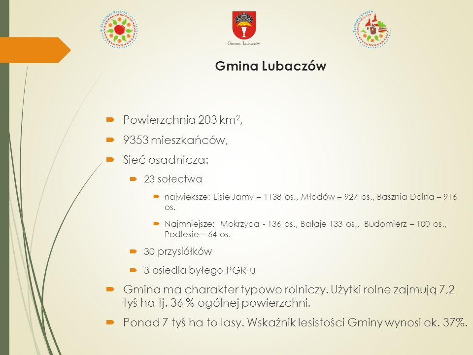  Powierzchnia 203 km 2,  9353 mieszkańców,  Sieć osadnicza:  23 sołectwa  największe: Lisie Jamy – 1138 os., Młodów – 927 os., Basznia Dolna – 916 os.