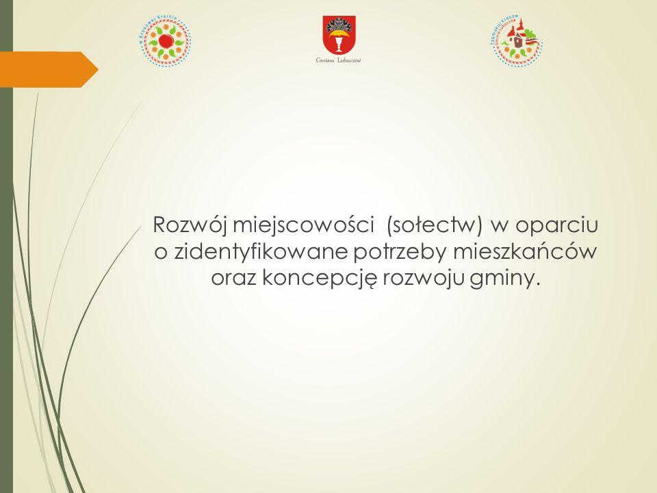 Diagnoza potrzeb:  Zebrania z mieszkańcami  Strategia Rozwoju Gminy Lubaczów na lata 2007-2013  Plany Odnowy Miejscowości