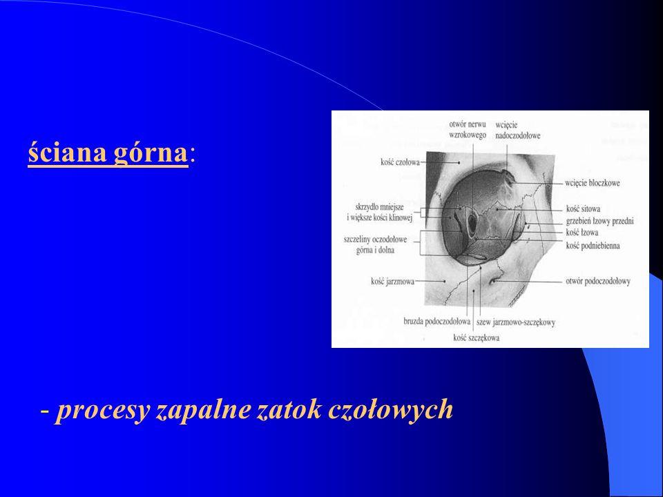 ściana przyśrodkowa najcieńsza; łatwość przechodzenia procesów zapalnych przez ciągłość: zapalenie okostnej, ropowica, ropień podokostnowy łatwość złamania – odma podskórna