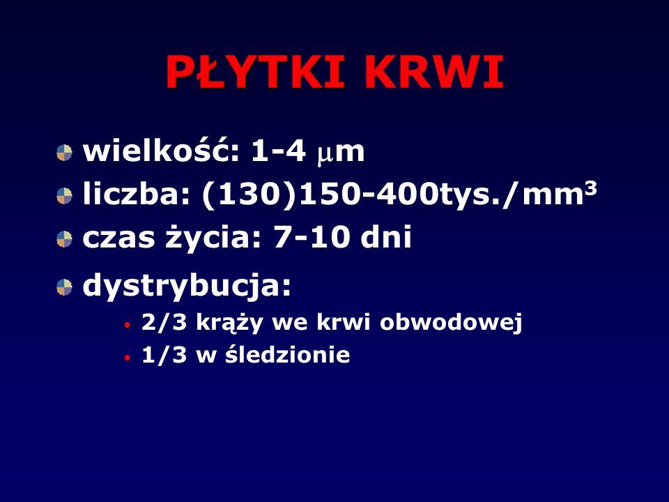 PŁYTKI PŁYTKI KRWI wielkość: 1-4 m liczba: (130)150-400tys./mm 3 czas życia: 7-10 dni dystrybucja: 2/3 krąży we krwi obwodowej 1/3 w śledzionie