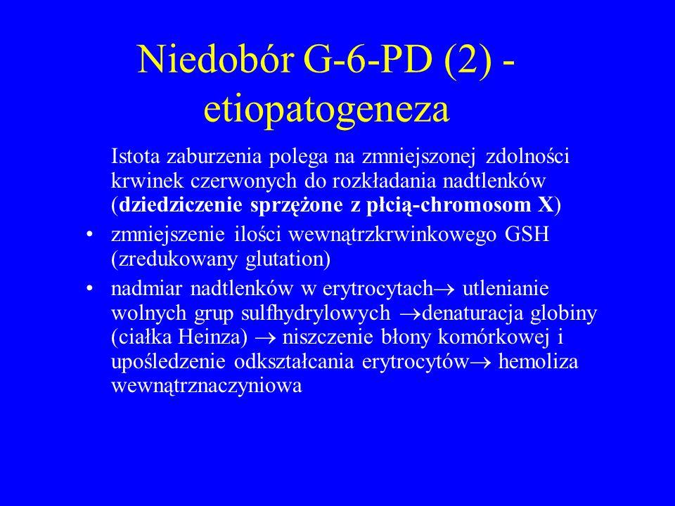 Niedobór G-6-PD (2) - etiopatogeneza Istota zaburzenia polega na zmniejszonej zdolności krwinek czerwonych do rozkładania nadtlenków (dziedziczenie sprzężone z płcią-chromosom X) zmniejszenie ilości wewnątrzkrwinkowego GSH (zredukowany glutation) nadmiar nadtlenków w erytrocytach  utlenianie wolnych grup sulfhydrylowych  denaturacja globiny (ciałka Heinza)  niszczenie błony komórkowej i upośledzenie odkształcania erytrocytów  hemoliza wewnątrznaczyniowa