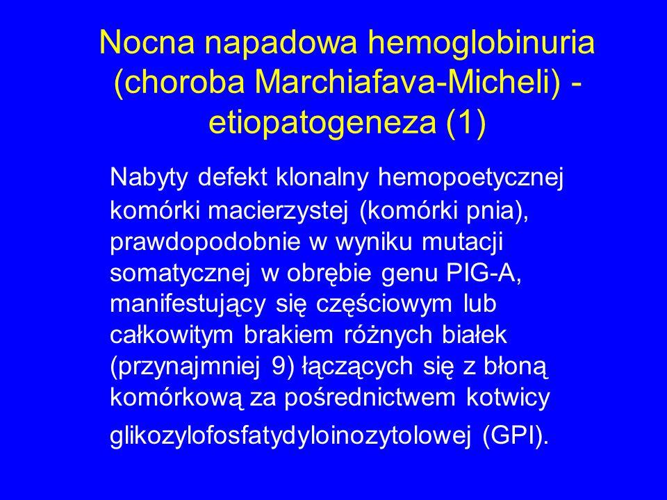 Nocna napadowa hemoglobinuria (choroba Marchiafava-Micheli) - etiopatogeneza (1) Nabyty defekt klonalny hemopoetycznej komórki macierzystej (komórki pnia), prawdopodobnie w wyniku mutacji somatycznej w obrębie genu PIG-A, manifestujący się częściowym lub całkowitym brakiem różnych białek (przynajmniej 9) łączących się z błoną komórkową za pośrednictwem kotwicy glikozylofosfatydyloinozytolowej (GPI).