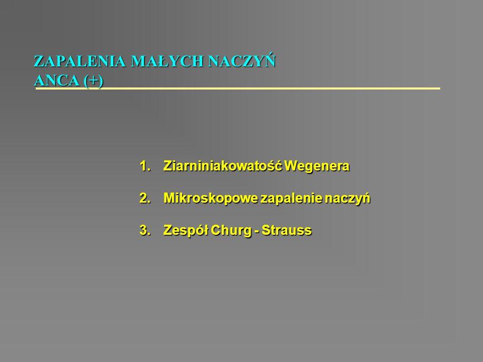 1.Ziarniniakowatość Wegenera 2.Mikroskopowe zapalenie naczyń 3.Zespół Churg - Strauss ZAPALENIA MAŁYCH NACZYŃ ANCA (+)