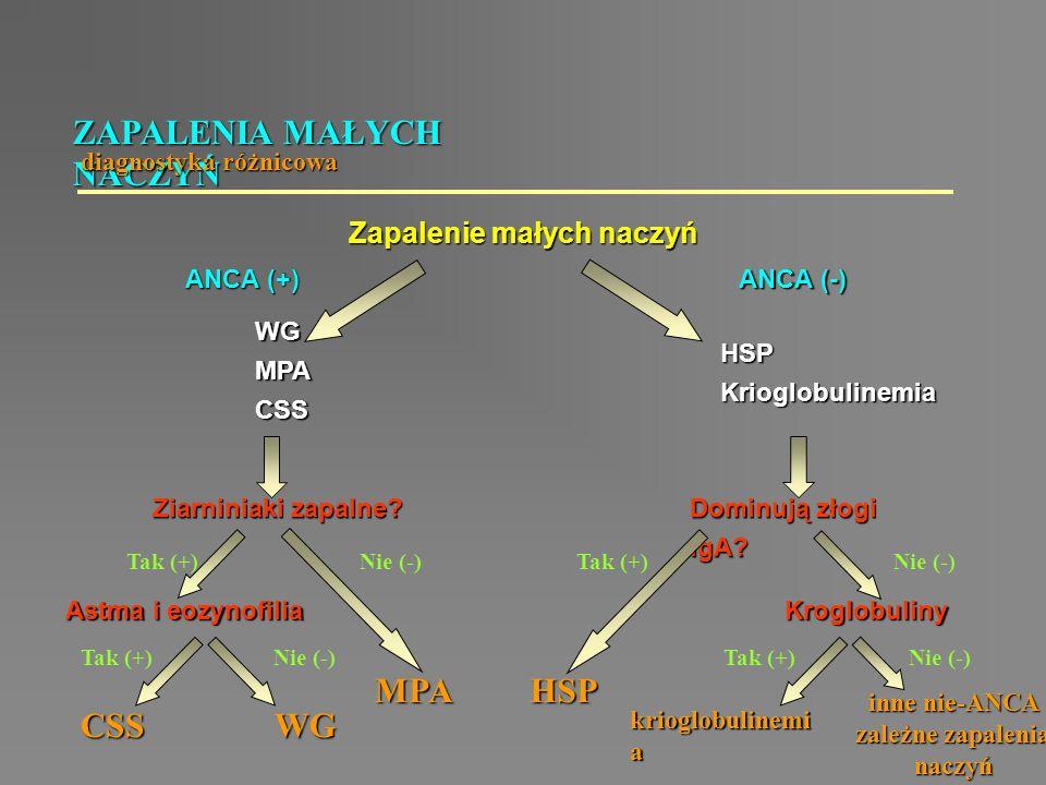 ZAPALENIA MAŁYCH NACZYŃ diagnostyka różnicowa WGMPACSS Zapalenie małych naczyń ANCA (+) ANCA (-) HSPKrioglobulinemia Ziarniniaki zapalne? Dominują zło